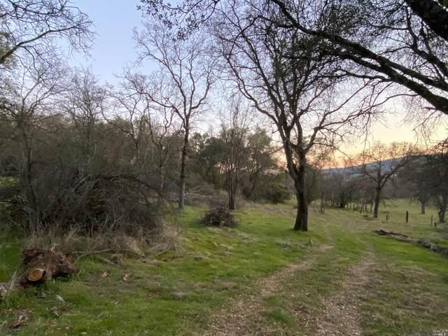 4568 Morgan Road, Angels Camp, CA 95222 (MLS #22003237) :: Keller Williams - The Rachel Adams Lee Group