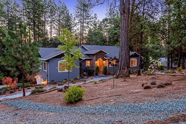 14050 Pine Park Loop, Pine Grove, CA 95665 (MLS #22025025) :: 3 Step Realty Group