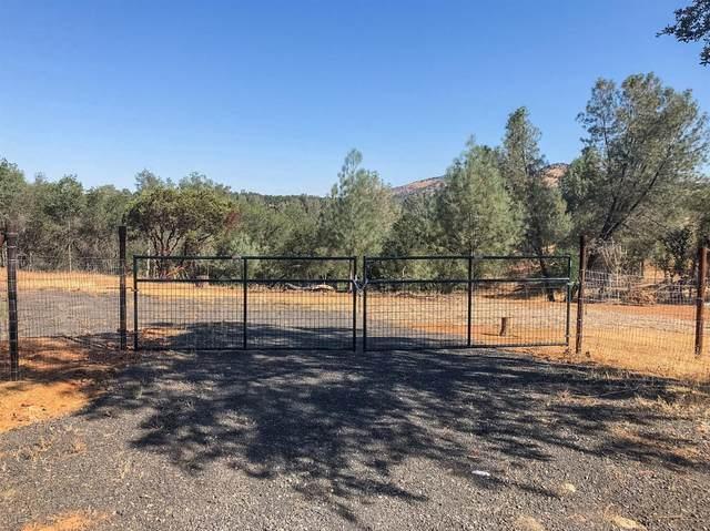 28 Black Creek Drive, Copperopolis, CA 95228 (#221000230) :: The Lucas Group