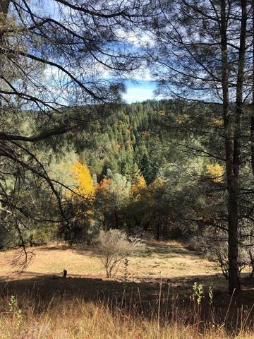 5371 Five Spot Rd, Pollock Pines, CA 95726 (MLS #221000921) :: eXp Realty of California Inc