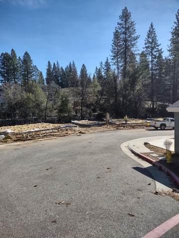 255 Pello Lane, Nevada City, CA 95959 (#221002294) :: Jimmy Castro Real Estate Group