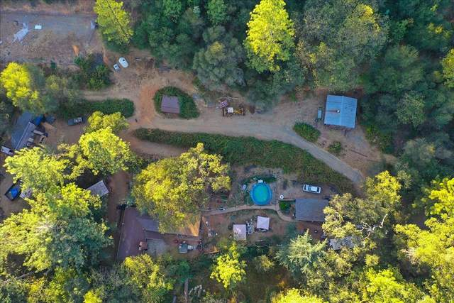 18684 State Highway 49, Grass Valley, CA 95949 (MLS #221003776) :: eXp Realty of California Inc