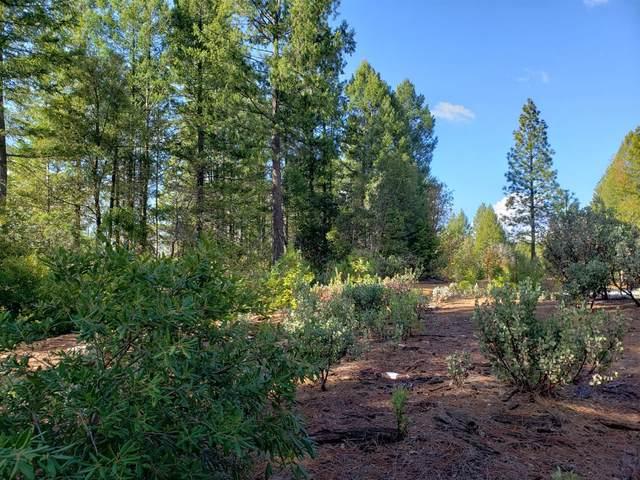 0 Sunset Peak Lane, Georgetown, CA 95634 (MLS #221004424) :: Keller Williams Realty