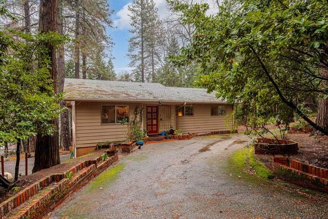 10140 Elder Drive, Grass Valley, CA 95949 (MLS #221006649) :: The Merlino Home Team