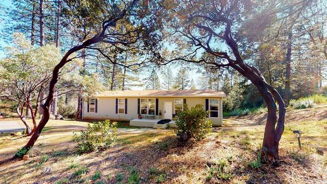 260 Hilton Drive, Applegate, CA 95703 (MLS #221007279) :: The Merlino Home Team