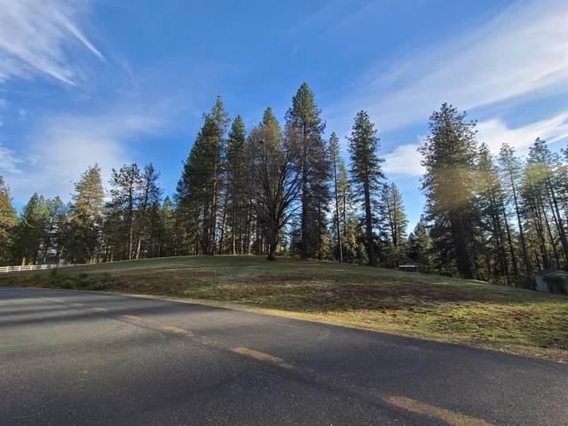 10159 Evergreen Ranch Court, Grass Valley, CA 95949 (MLS #221007441) :: The Merlino Home Team