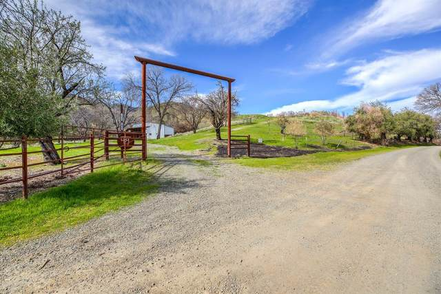 7090 County Road 49, Guinda, CA 95637 (#221008282) :: Jimmy Castro Real Estate Group
