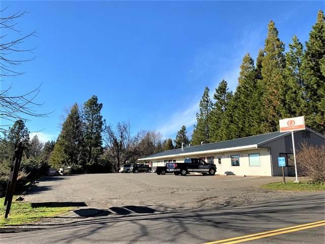 429 Main Street, West Point, CA 95255 (MLS #221008303) :: Keller Williams - The Rachel Adams Lee Group