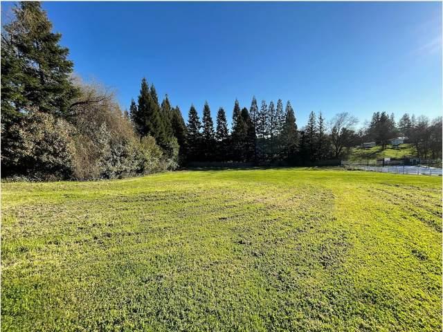 4121 Saint Anselm Court, Fair Oaks, CA 95628 (MLS #221009357) :: eXp Realty of California Inc