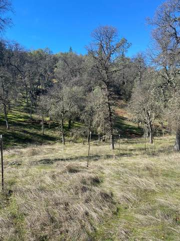 22252 Retherford Road, Grass Valley, CA 95949 (MLS #221009627) :: The Merlino Home Team