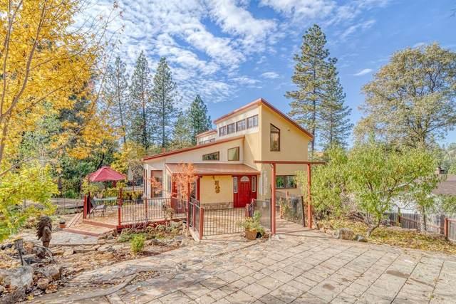 3440 Cedar Springs Lane, Meadow Vista, CA 95722 (MLS #221009752) :: Dominic Brandon and Team