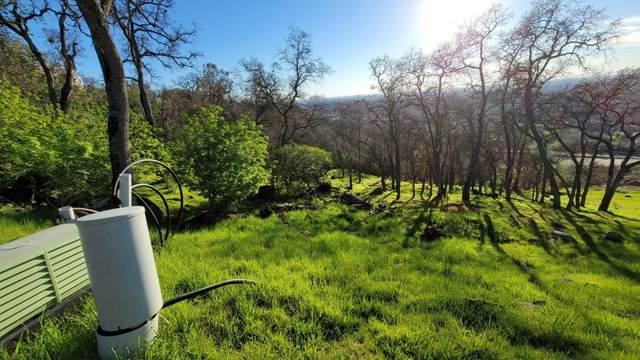 1450 Tiburon Way Way, El Dorado Hills, CA 95762 (MLS #221009860) :: Live Play Real Estate | Sacramento