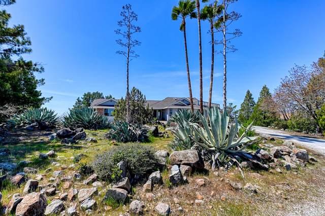 1030 Loma Court, Shingle Springs, CA 95682 (MLS #221010647) :: eXp Realty of California Inc