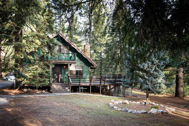 10047 Grizzly Flat Road, Grizzly Flats, CA 95636 (MLS #221011226) :: Dominic Brandon and Team