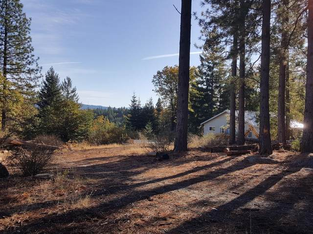 29290 Ridgeview Rd, Foresthill, CA 95631 (MLS #221011283) :: The Merlino Home Team
