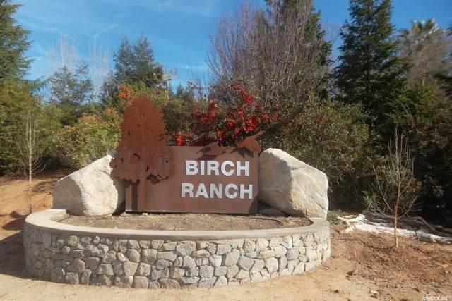 0 Birch Ranch Drive, Sacramento, CA 95830 (#221011812) :: Jimmy Castro Real Estate Group