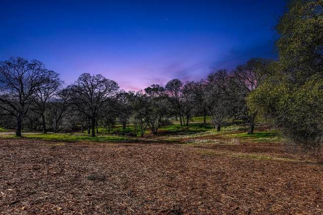 1 Lariat Drive, Cameron Park, CA 95682 (MLS #221011896) :: Live Play Real Estate | Sacramento