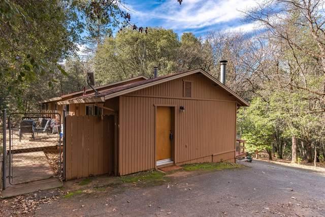 12668 Garbo Lane, Pine Grove, CA 95665 (#221012085) :: Jimmy Castro Real Estate Group