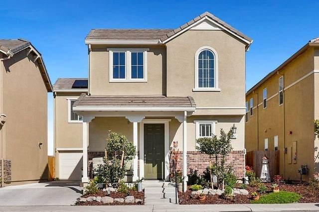 1042 Sagittaria Circle, Rocklin, CA 95765 (MLS #221012883) :: Dominic Brandon and Team