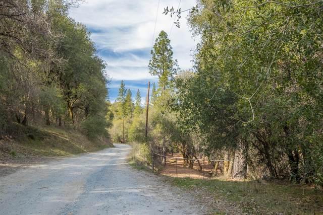 0 10 Ac Little Canyon Road, El Dorado, CA 95667 (MLS #221013314) :: Deb Brittan Team