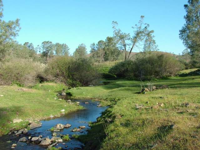 0 Red Hills Road, Chinese Camp, CA 95309 (MLS #221014631) :: Live Play Real Estate | Sacramento