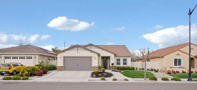 2668 Roseberry Avenue, Manteca, CA 95336 (MLS #221016016) :: REMAX Executive