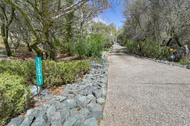 11771 Warbler Way, Penn Valley, CA 95946 (#221019016) :: The Lucas Group