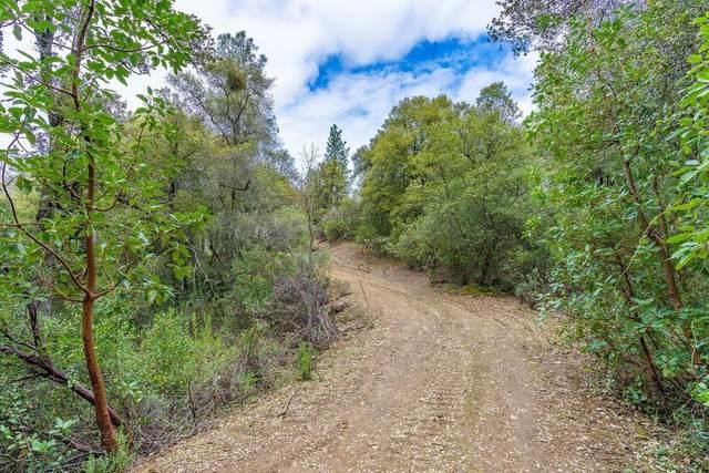 0 Meadow Lark Lane, Sutter Creek, CA 95685 (MLS #221021546) :: eXp Realty of California Inc