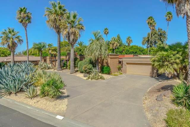 44366 Clubhouse, El Macero, CA 95618 (#221022733) :: Jimmy Castro Real Estate Group