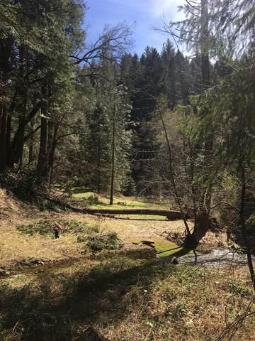 4952 Sierra Springs Dr., Pollock Pines, CA 95726 (#221022845) :: The Lucas Group