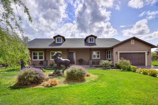 37193 State Highway 16, Woodland, CA 95695 (MLS #221023155) :: eXp Realty of California Inc