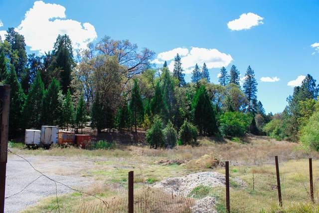 27994 Cemetery Aly, North San Juan, CA 95960 (MLS #221024358) :: 3 Step Realty Group