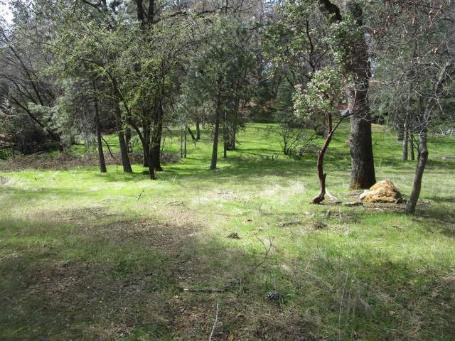18502 Norlene Way, Grass Valley, CA 95949 (MLS #221024370) :: eXp Realty of California Inc