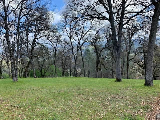 4940 Glory View Drive, Placerville, CA 95667 (MLS #221024913) :: Keller Williams - The Rachel Adams Lee Group