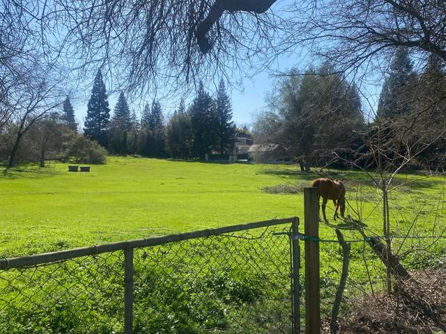 5033 Illinois Avenue, Fair Oaks, CA 95628 (MLS #221025041) :: The Merlino Home Team