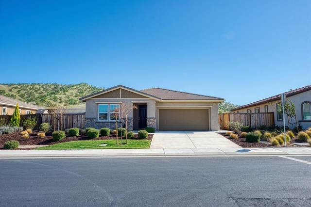 21150 Grapevine Dr., Patterson, CA 95363 (MLS #221029029) :: eXp Realty of California Inc