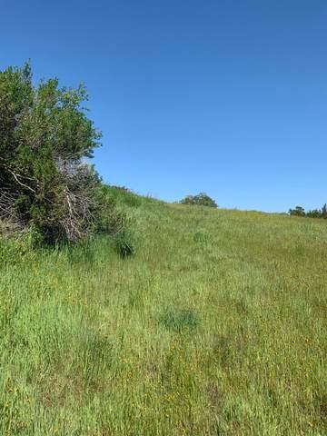 2927 Cascade Lane, Valley Springs, CA 95252 (MLS #221029507) :: Keller Williams - The Rachel Adams Lee Group