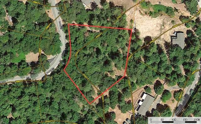23065 Roden Lane, Pioneer, CA 95666 (MLS #221029848) :: Keller Williams - The Rachel Adams Lee Group