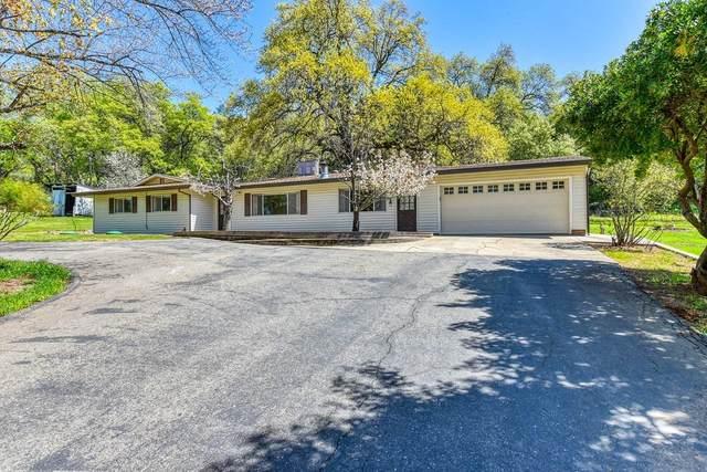 4661 Trotter Lane, Shingle Springs, CA 95682 (MLS #221030832) :: eXp Realty of California Inc