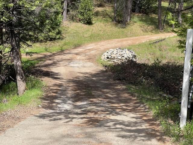 0 State Highway 88, Pine Grove, CA 95665 (MLS #221031052) :: 3 Step Realty Group