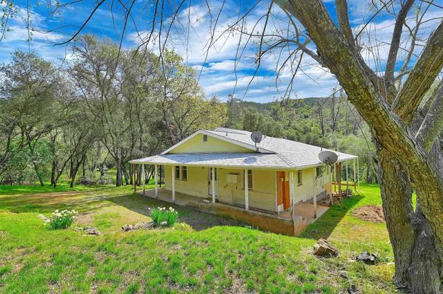 5551 Bumper Road, El Dorado, CA 95623 (MLS #221031776) :: 3 Step Realty Group