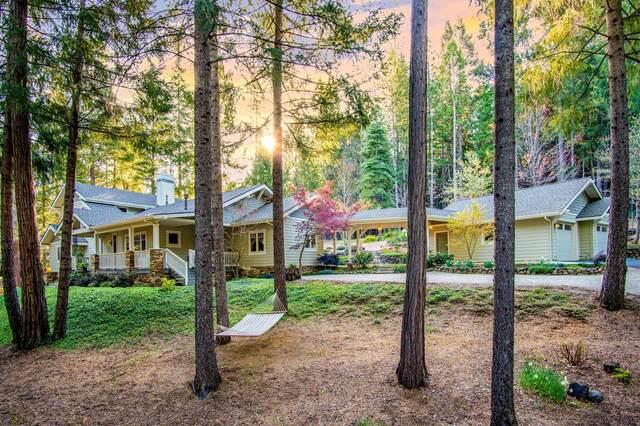 10568 Murchie Mine Road, Nevada City, CA 95959 (MLS #221032543) :: eXp Realty of California Inc