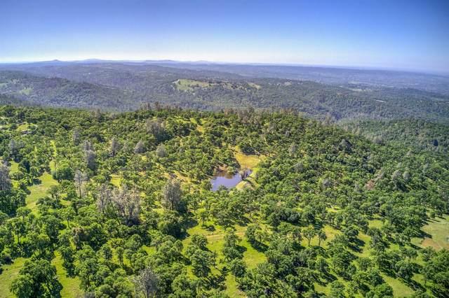 0 Vista Bella/Big Hill - 80, Auburn, CA 95602 (#221032791) :: Rapisarda Real Estate