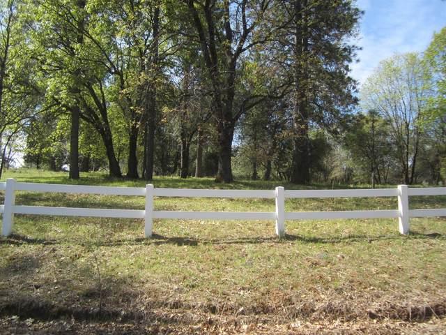 8829 Rock Creek Road, Placerville, CA 95667 (MLS #221032838) :: Deb Brittan Team