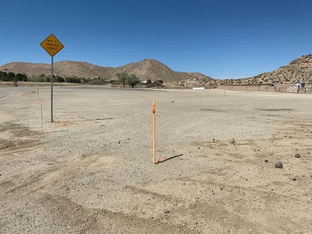 0 Lake Los Angeles, Palmdale, CA 93591 (MLS #221033081) :: Heidi Phong Real Estate Team