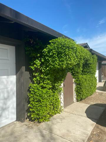 1547 Moffett Road, Ceres, CA 95307 (#221033456) :: The Lucas Group