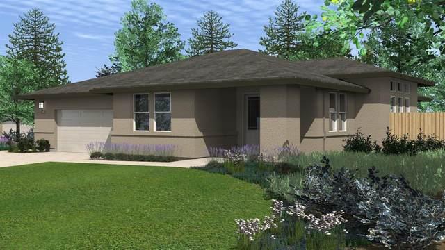 134 Emerald Lane, Jackson, CA 95642 (#221033810) :: The Lucas Group