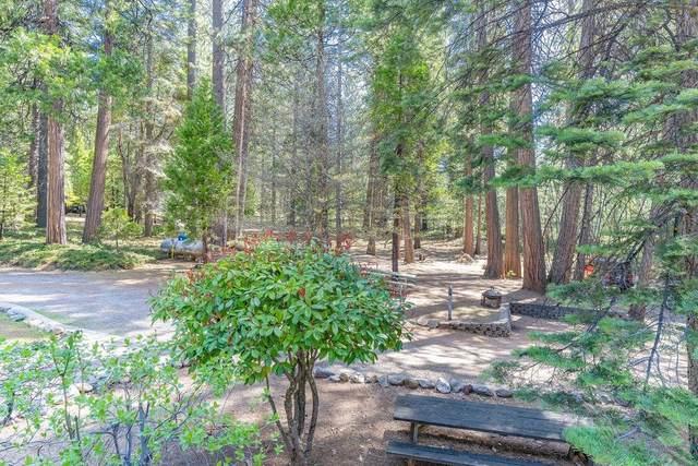 27349 State Highway 88, Pioneer, CA 95666 (MLS #221033852) :: Keller Williams - The Rachel Adams Lee Group