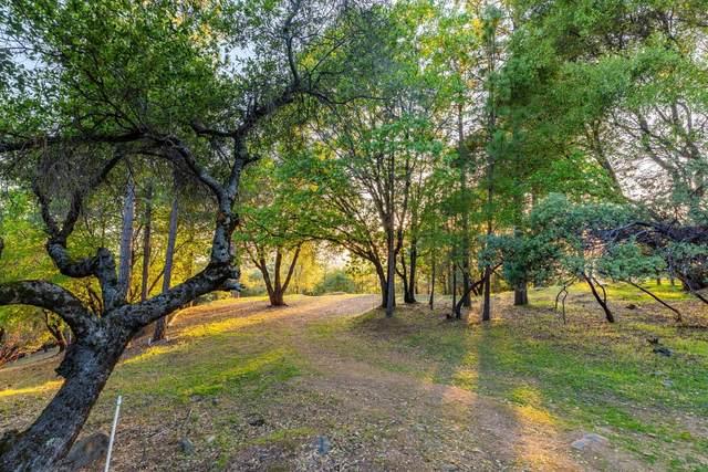 18230 West Vw, Pine Grove, CA 95665 (MLS #221033875) :: 3 Step Realty Group