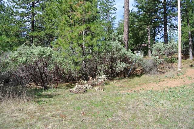 1 Todd Valley Road, Foresthill, CA 95631 (MLS #221034071) :: eXp Realty of California Inc